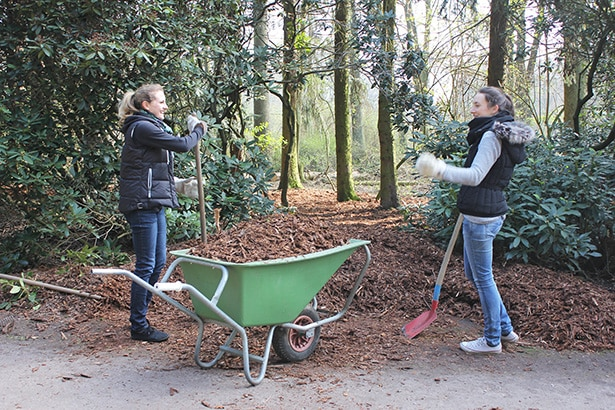Freiwilliges Engagement im Hamburger Stadtpark