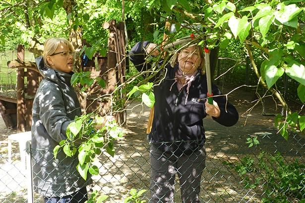 Garteneinsatz in der Kita + Kirchengemeinde St. Petri und Pauli