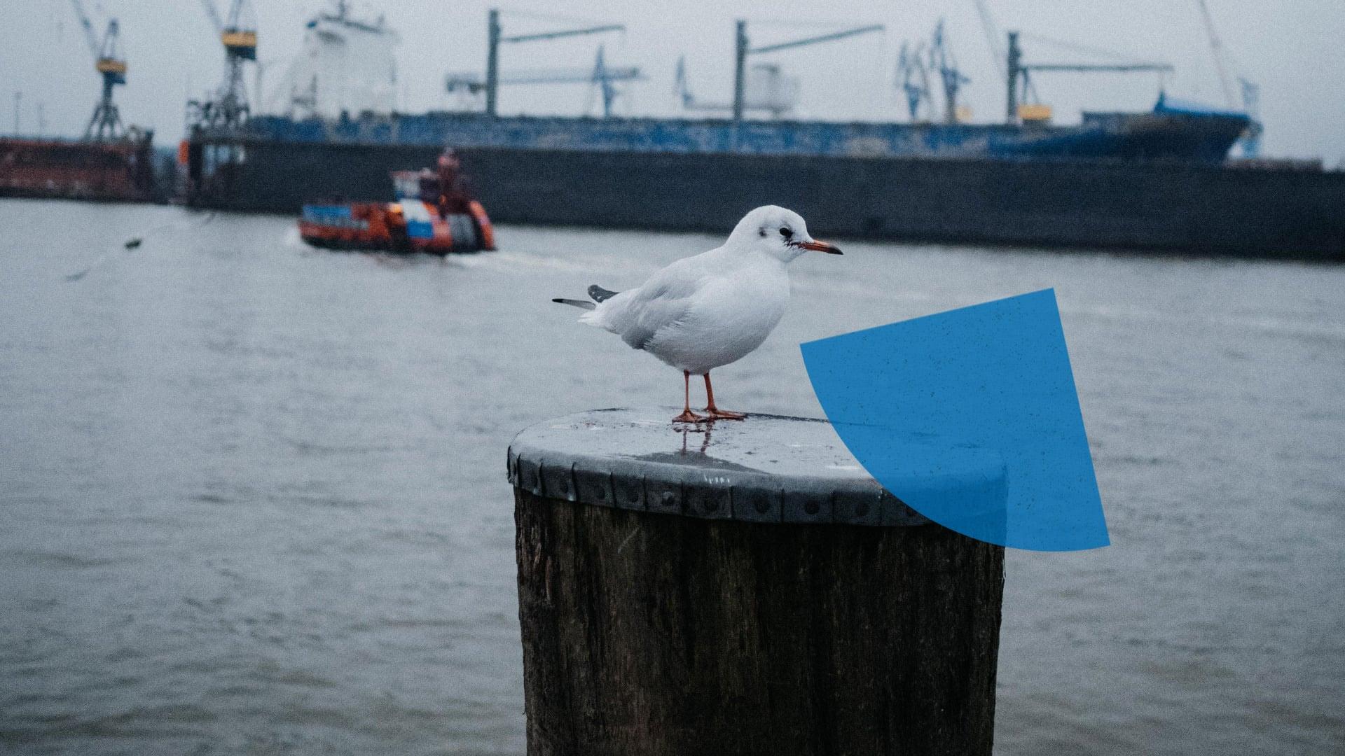 tatkräftig - Blog - Hafen